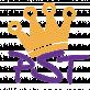 Logo Persempretoys.nl