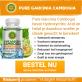 Logo Pure Garcinia Cambogia (NL + BENL)
