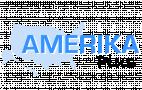 Logo Amerikaplus.nl