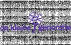 Logo Dekleinegeneratie.nl