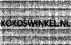 Logo Kokoswinkel.nl